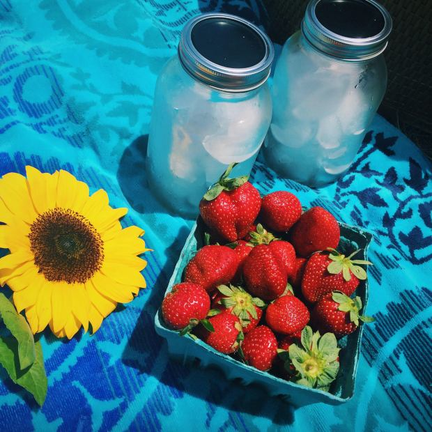 & we ended the date with the most adorable picnic & the freshest of sunflowers.